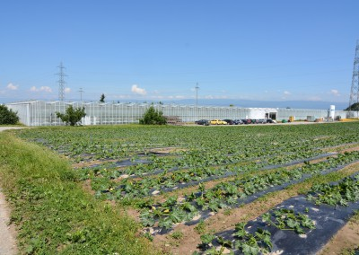 Projet de développement régional Seeland